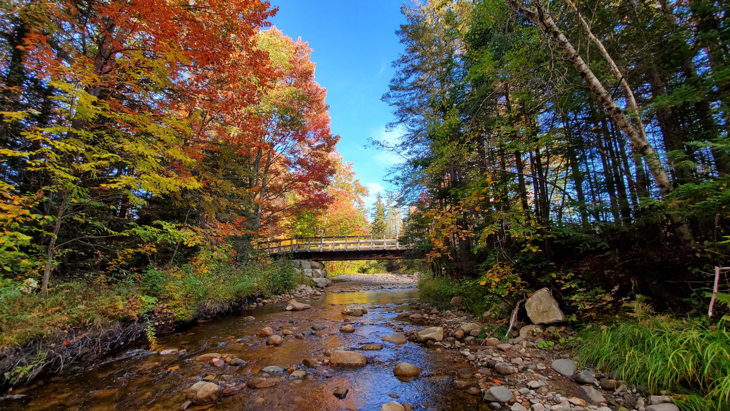 A wooden bridge in the Androscoggin Valley surrounded by fall foliage
